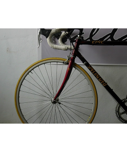 SPECIALIZED EPIC CAMPAGNOLO STRATOR