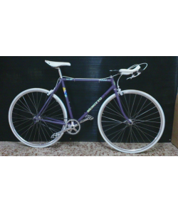 FIXIE BENOTTO