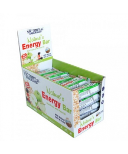 NATURE´S BAR VICTORY ENDURANCE CAJA